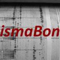 Quale zonazione sismica si applica per il Sisma Bonus?